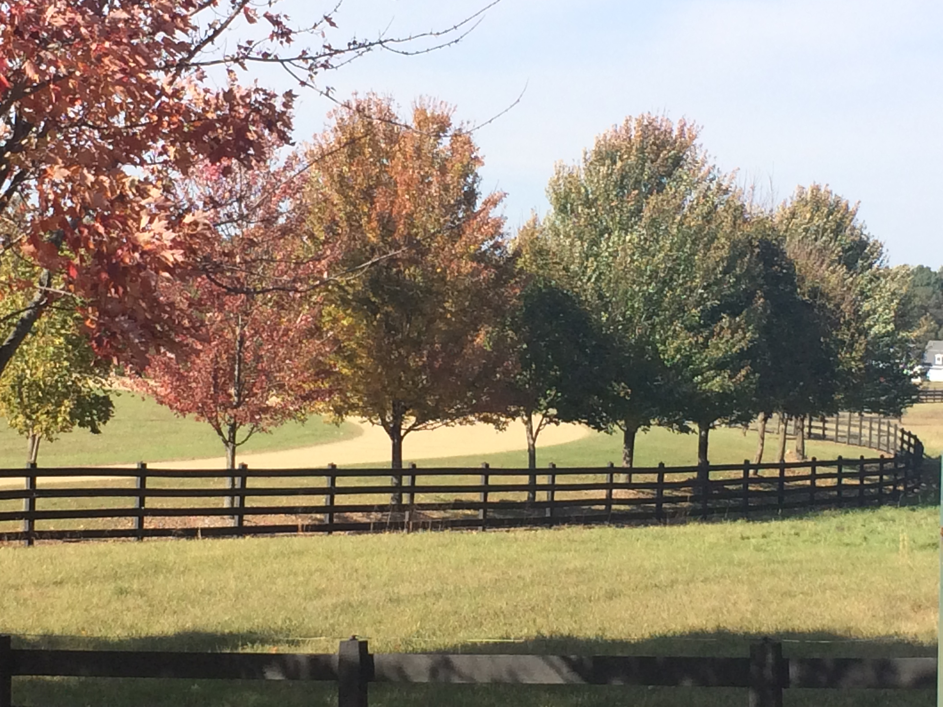 A brown 4 board fence along a dirt road with green grass and trees in various fall colors of red, yellow, orange, and green against a light blue sky