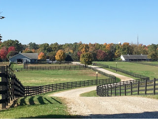Jonesville Michigan Horse Ranch with brown fence curved road, gray farm buildings, and forest in Fall colors