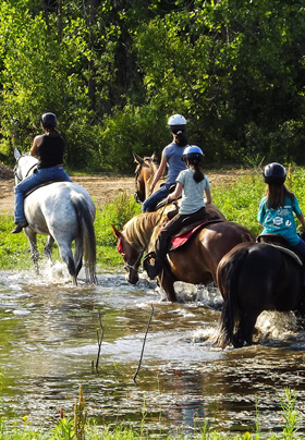 four trail riders dressed in blue on horseback crossing a low stream of water