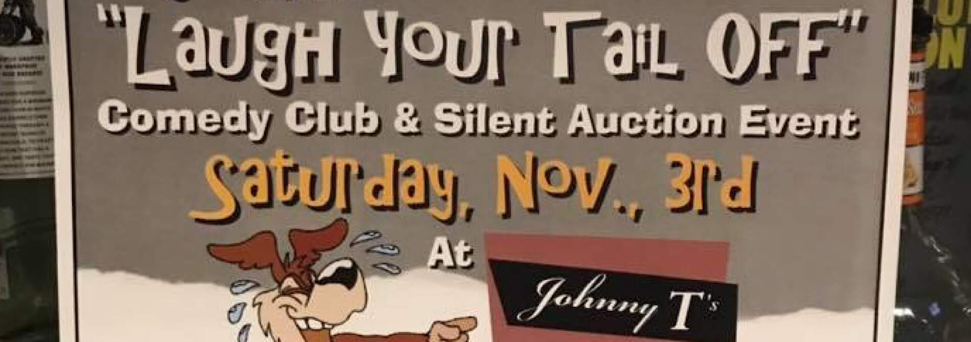 poster advertising comedy club at johnny t's next door in hillsdale mi on saturday november 3, 2018